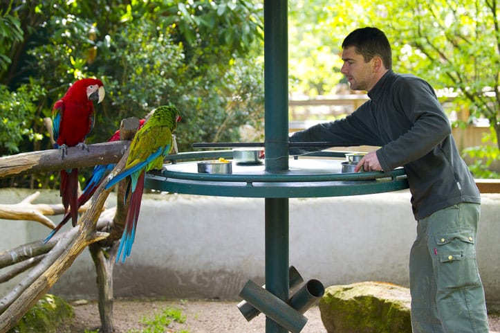 Zoo d'Amneville - Animaux